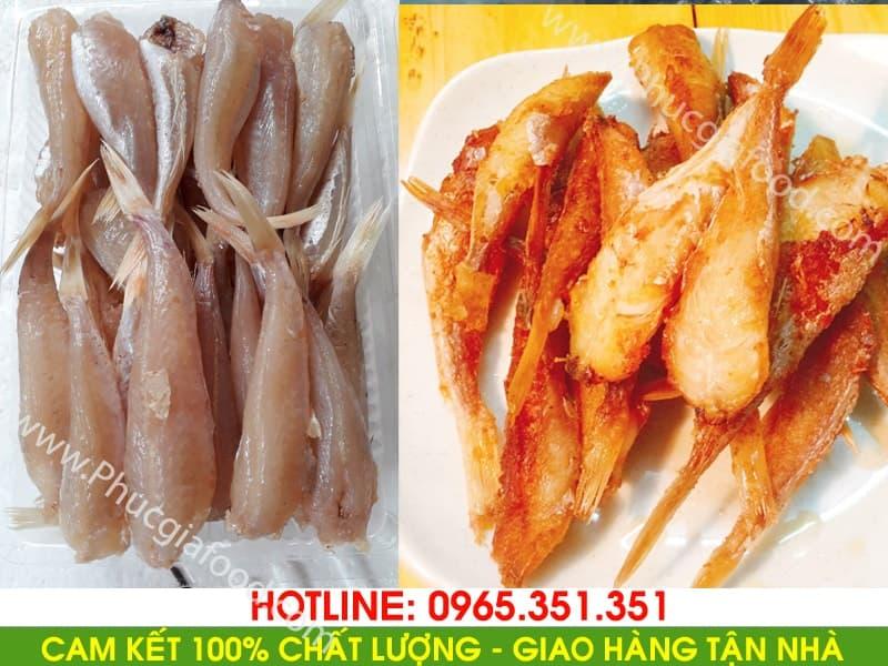 Nhận cung cấp bán buôn bán lẻ báo giá cá đùi gà 1 nắng đảm bảo chất lượng